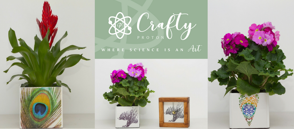 Crafy Proton Unique Gifts, planters and tiles.
